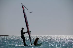 water-sports-1829605_1920